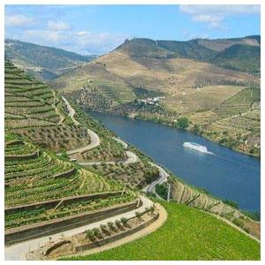 Douro-Boat